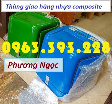 Thùng giao hàng loại nhỏ, thùng chở linh kiện, thùng giao đồ ăn sau xe máy TGHN6