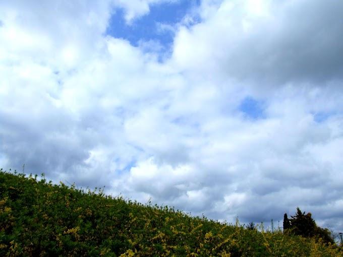 082 #青空 #空 #雲 #風景 #自然