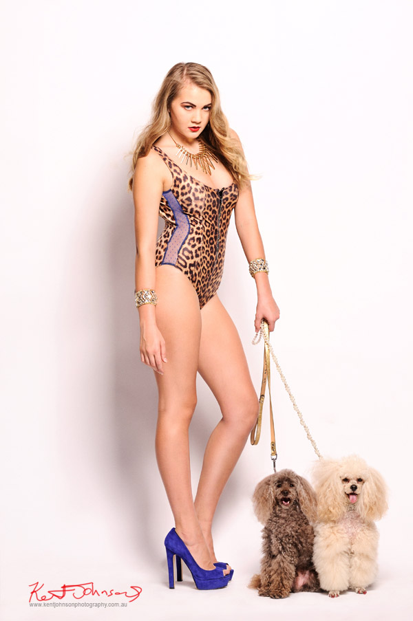 Blond model in one piece leopard print swimsuit with cobalt blue mesh side panel, white background studio shot with two poodles, photographed by Kent Johnson.