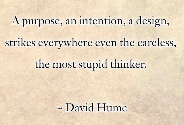 David Hume Quotes in English