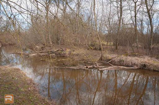 Upes krasts ar nogāztiem kokiem