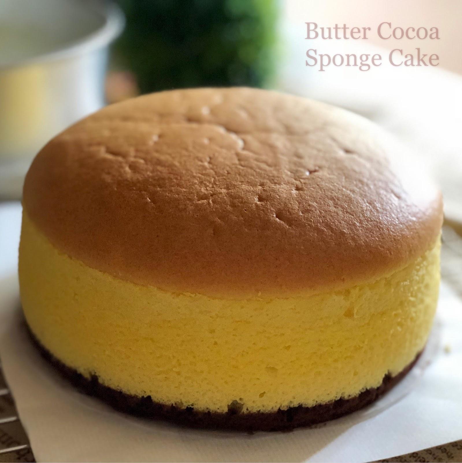 My Mind Patch Butter Cocoa Sponge Cake 奶油可可海绵蛋糕