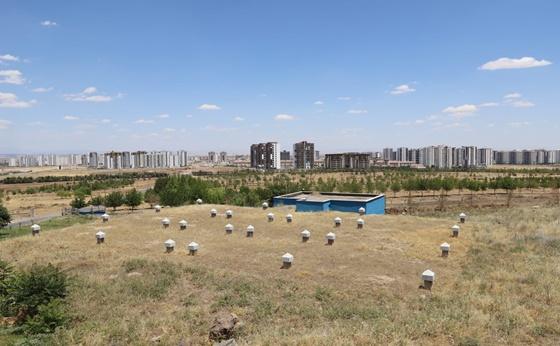 DİSKİ'den yeni yerleşim yerlerine içme suyu şebekesi