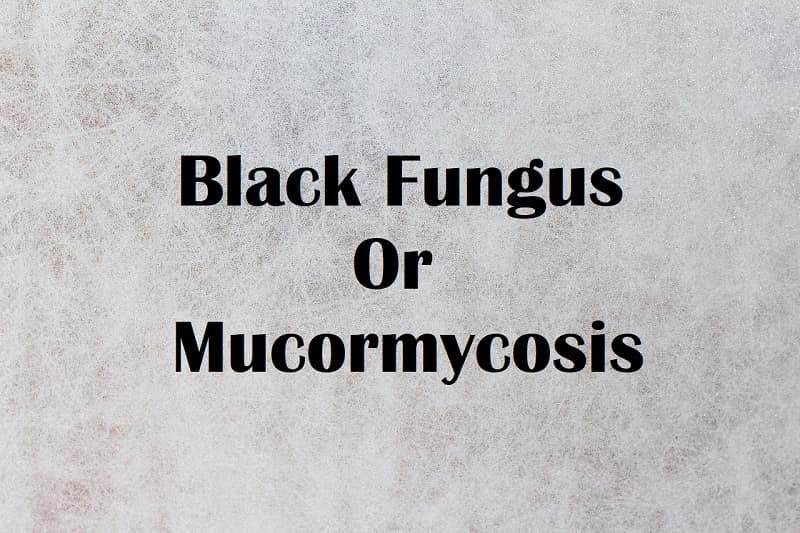 What is Black Fungus or Mucormycosis in Covid-19 patients?