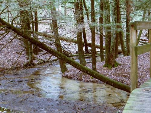 Second Cole Creek