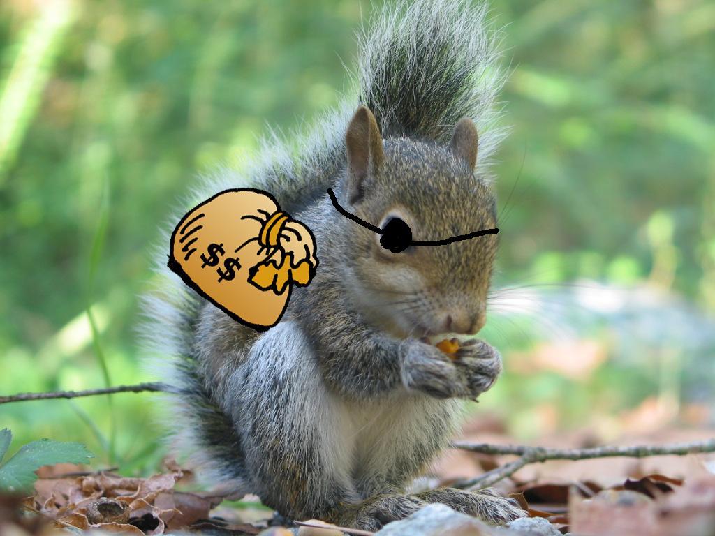 Nutty Squirrel Porno breakmentaldown: june 2011
