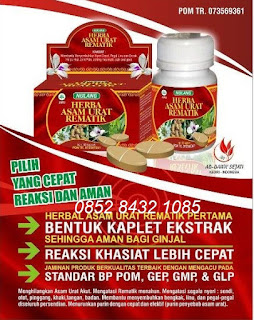 Khasiat Obat alami herbal Asam Urat-RematikNULANG ASLI tradisional