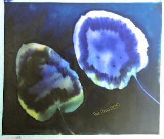 Wet cyanotype -Sue Reno_Image 660