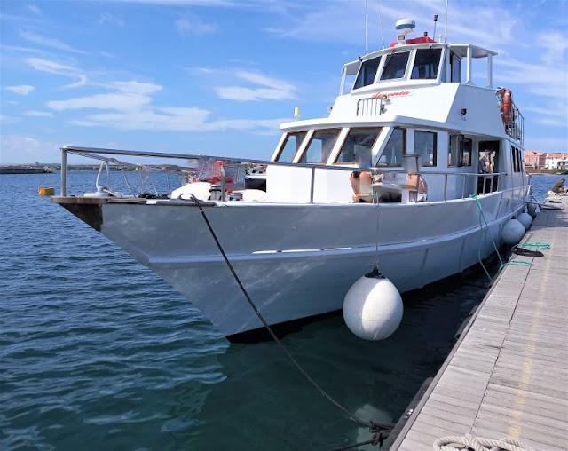 motonave Ausonia Asinara