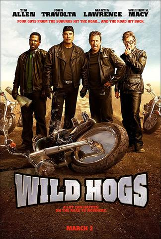 Wild Hogs 2007 Dual Audio Hindi 480p BluRay x264 300MB ESubs