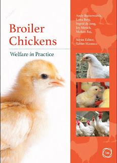 Broiler Chickens Welfare in Practice – 2021