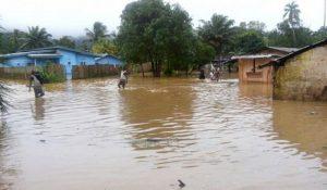 Anguish, pain as flood sacks Nsukka residents
