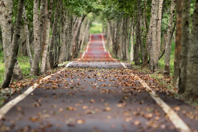 Road 4k Wallpaper / Images - Street wallpaper free download 2020