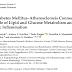 A Conexão Diabetes Mellitus-Aterosclerose: O Papel do Metabolismo dos Lipídios e Glicose e Inflamação Crônica