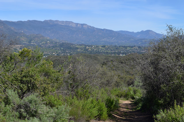 Topatopa Bluffs above Ojai