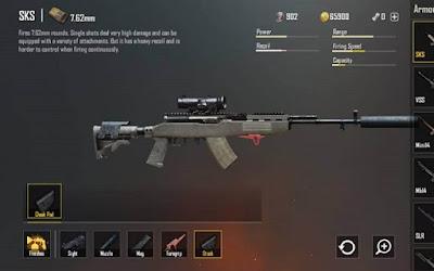 DMR - dòng súng dựa trên ưu điểm của Assault Rifle và sniper Rifle