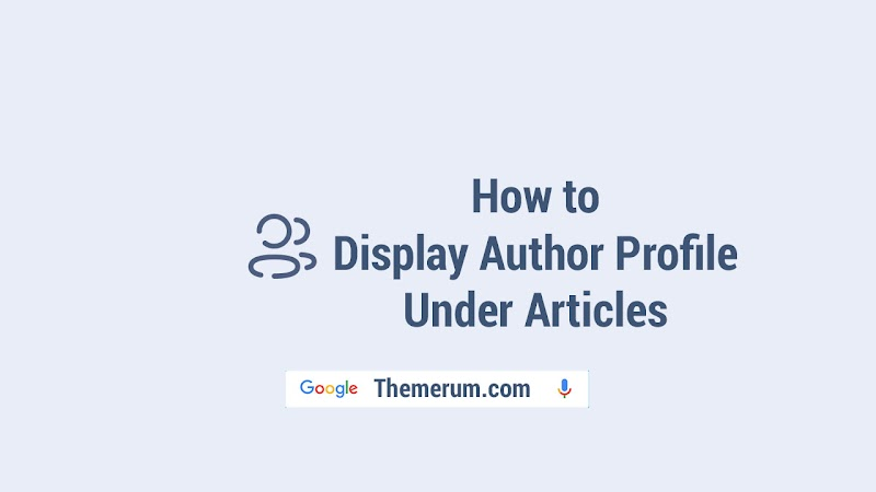 How to Display Author Profile Under Articles