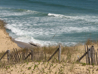 Marconi Beach Surf Wellfleet Cape Cod