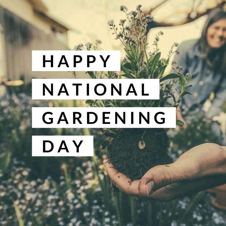 National Gardening Day Wishes for Whatsapp