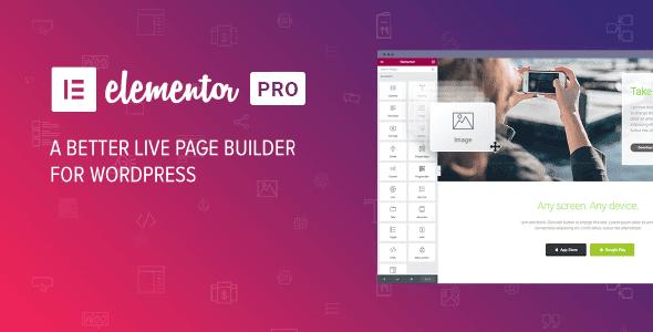 Elementor PRO WordPress Page Builder + Pro Templates V.3.0.4