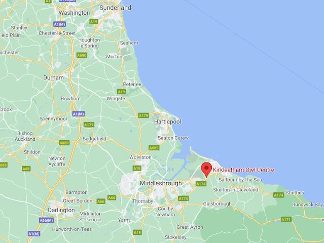 Kirkleatham Owl Centre Review - map