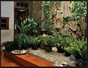 Inilah Cara Membuat Taman Minimalis Di Dalam Rumah Travel Jaya