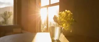 Sunlight Coming In Room Through Window