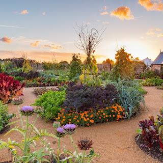 World Food Garden, el nuevo jardín de 'todas las cosas comestibles' de RHS Wisley