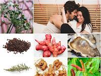 Membuat Ramuan Herbal untuk Meningkatkan Gairah Seksual Laki-laki ala Prof. H.M. Hembing Wijayakusuma