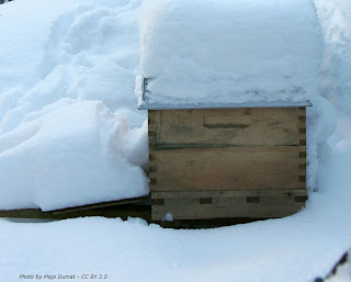 ventilation of hives in winter