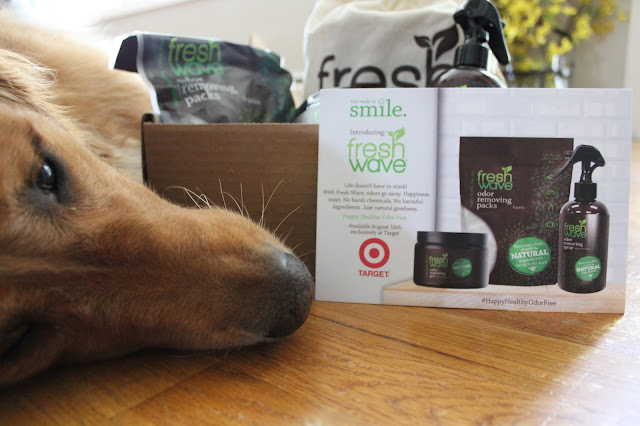 getting rid of pet odors with fresh wave products #happyhealthyodorfree