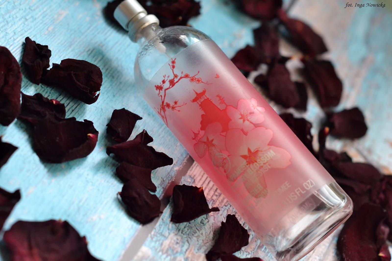 japan cherry bloosom