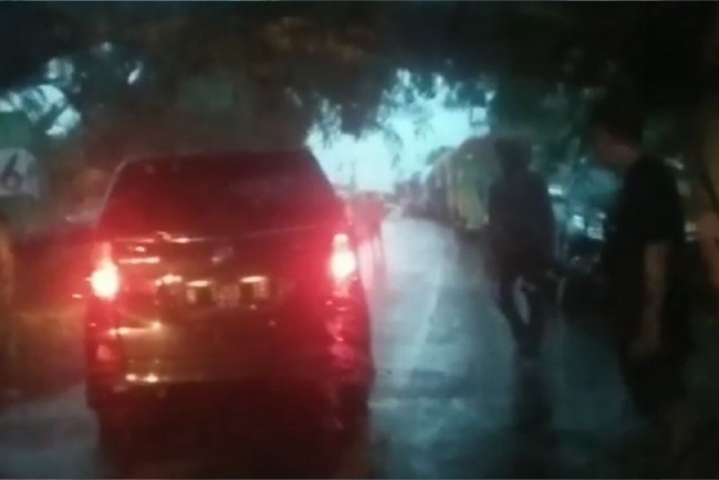 BREAKING NEWS: Jalan Poros Bone-Makassar Macet Hingga 1 KM Gara-gara Pohon Tumbang