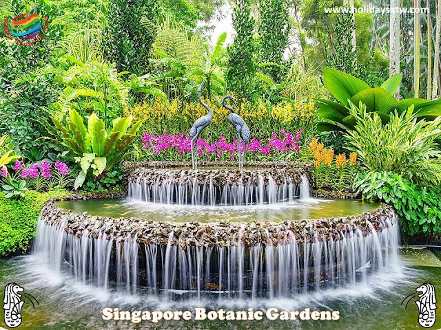 The most important attractions and activities in Singapore