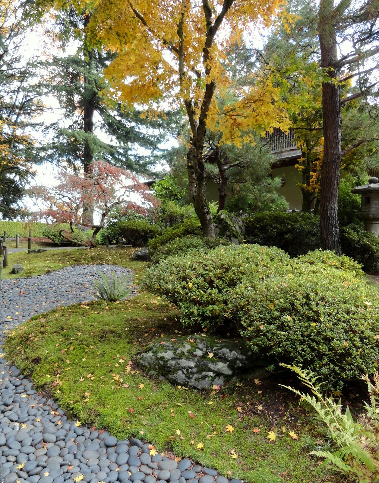 Portland Japanese Garden Store: Danger Garden: Foliage Follow-up For November Hits The