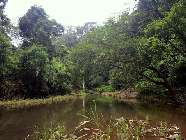 suối Đắk Ca, giữa rừng Bù Gia Mập