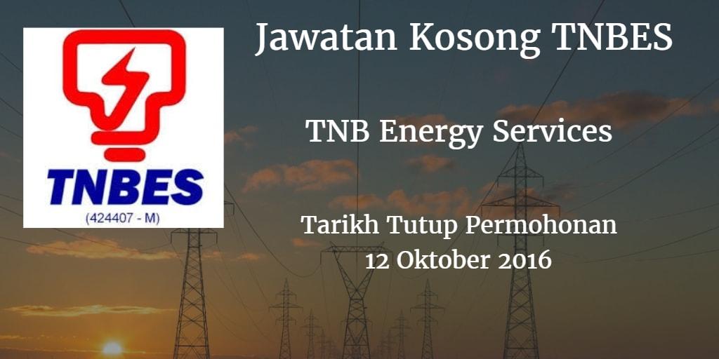 Jawatan Kosong TNBES 12 Oktober 2016