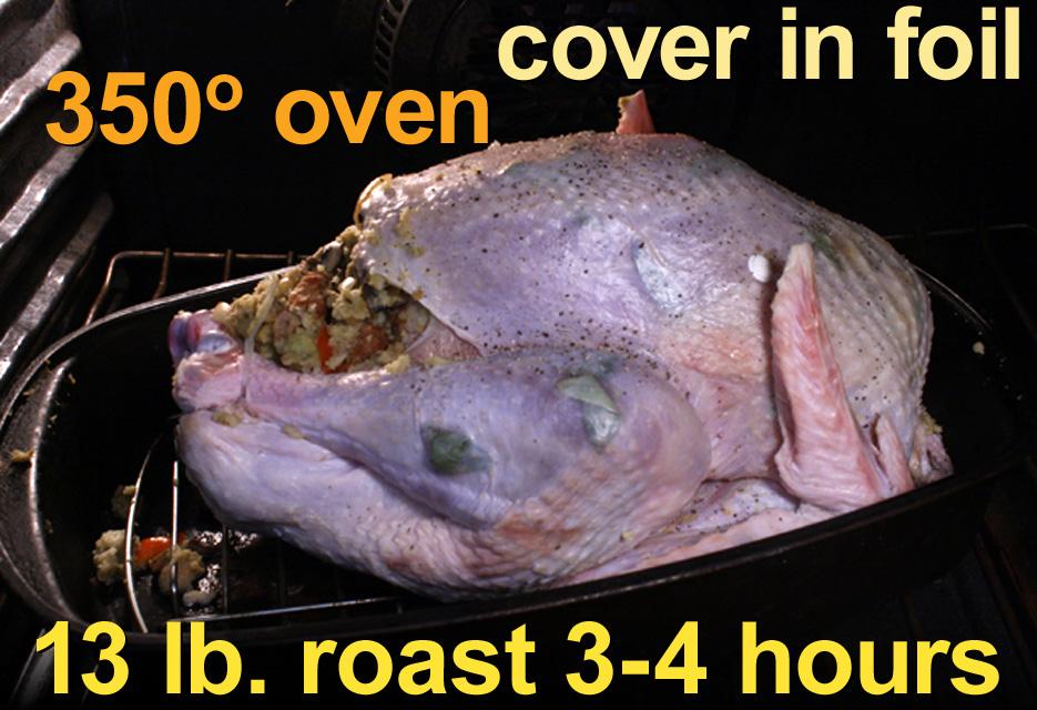 The 99 Cent Chef: Thanksgiving Recipes Week - Roast Turkey ...