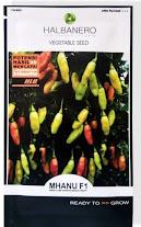 cara menanam cabe rawit, cabai, jual benih cabai, toko pertanian, toko online, lmga agro