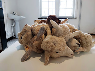 Ben Benaousse: Sheep head