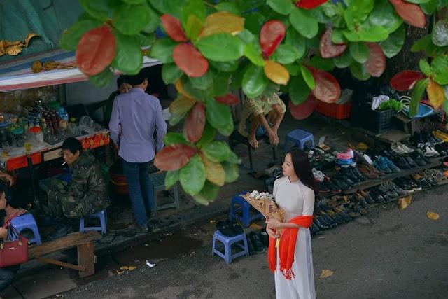 Nét đẹp mùa thu lá vàng ở Hà Nội