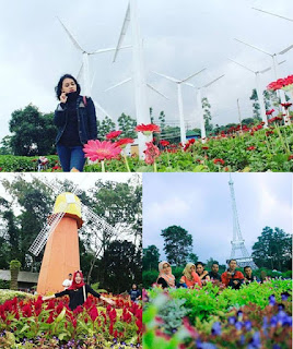 Tourist spot around the Celosia Flower Park