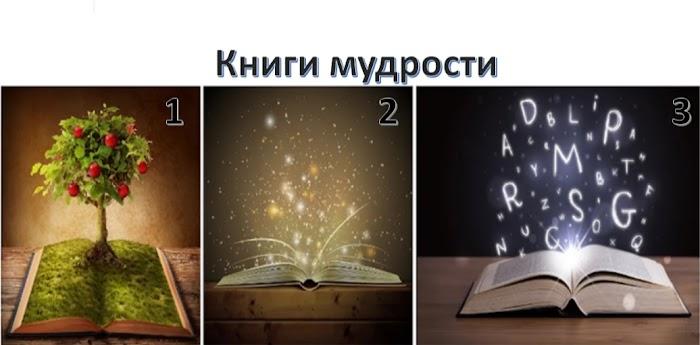 Выберите Книгу Мудрости. Она покажет вам путь к реализацию целей