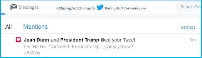 Fly on the Wall, the president liked my tweet? Or not | www.BakingInATornado.com | #funny #laugh