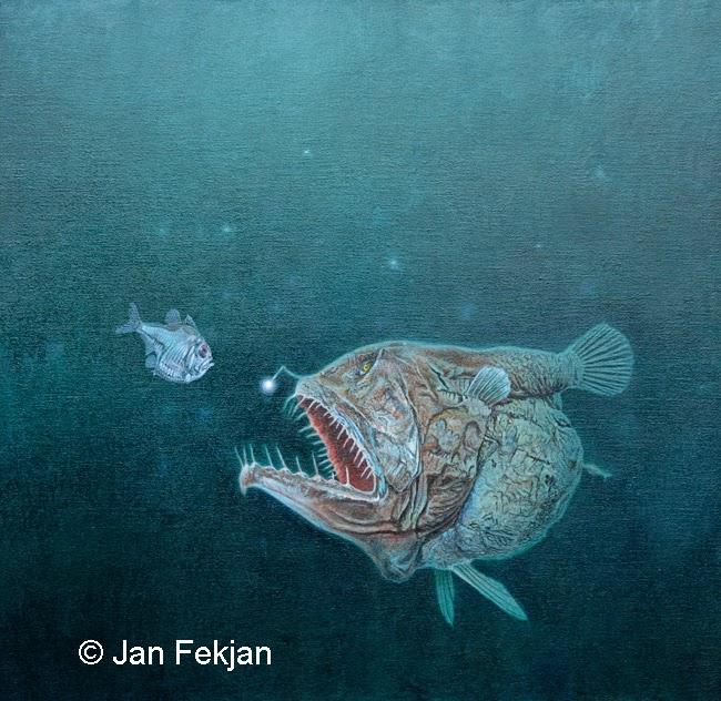 Bilde av digigrafiet 'Møte på dypet'. Digitalt trykk laget på bakgrunn av et maleri av en fisk. Illustrasjon av dyphavssmarulke, linphryne lucifer. Hovedmotivet er to dypvannsfisker som står mot hverandre. Den ene liten, den andre stor, med en 'lykt' og lange spisse tenner. Bildet er nærmest kvadratisk.