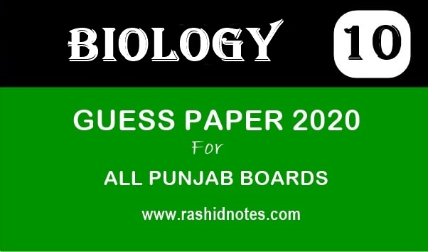 10th Class Biology Guess Paper 2020 - Rashid Notes