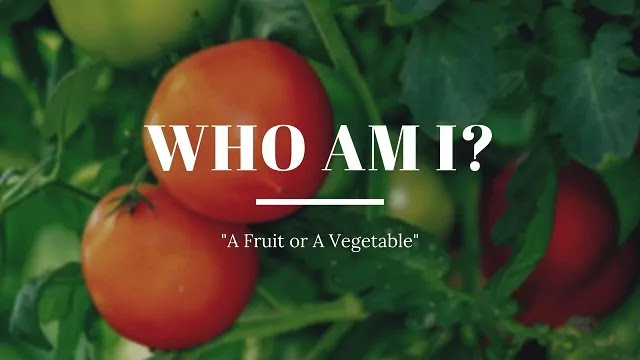 is tomato a fruit
