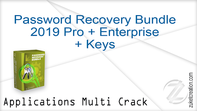 Password Recovery Bundle 2019 Pro + Enterprise + Keys
