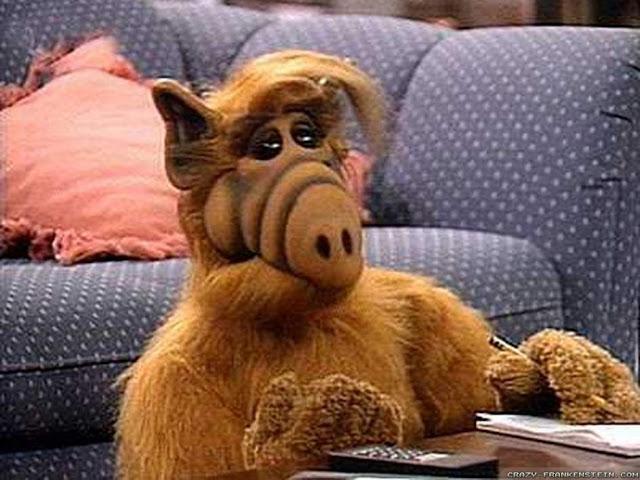 Alf (Michu Meszaros)
