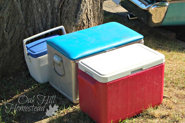 Coolers and ice chests
